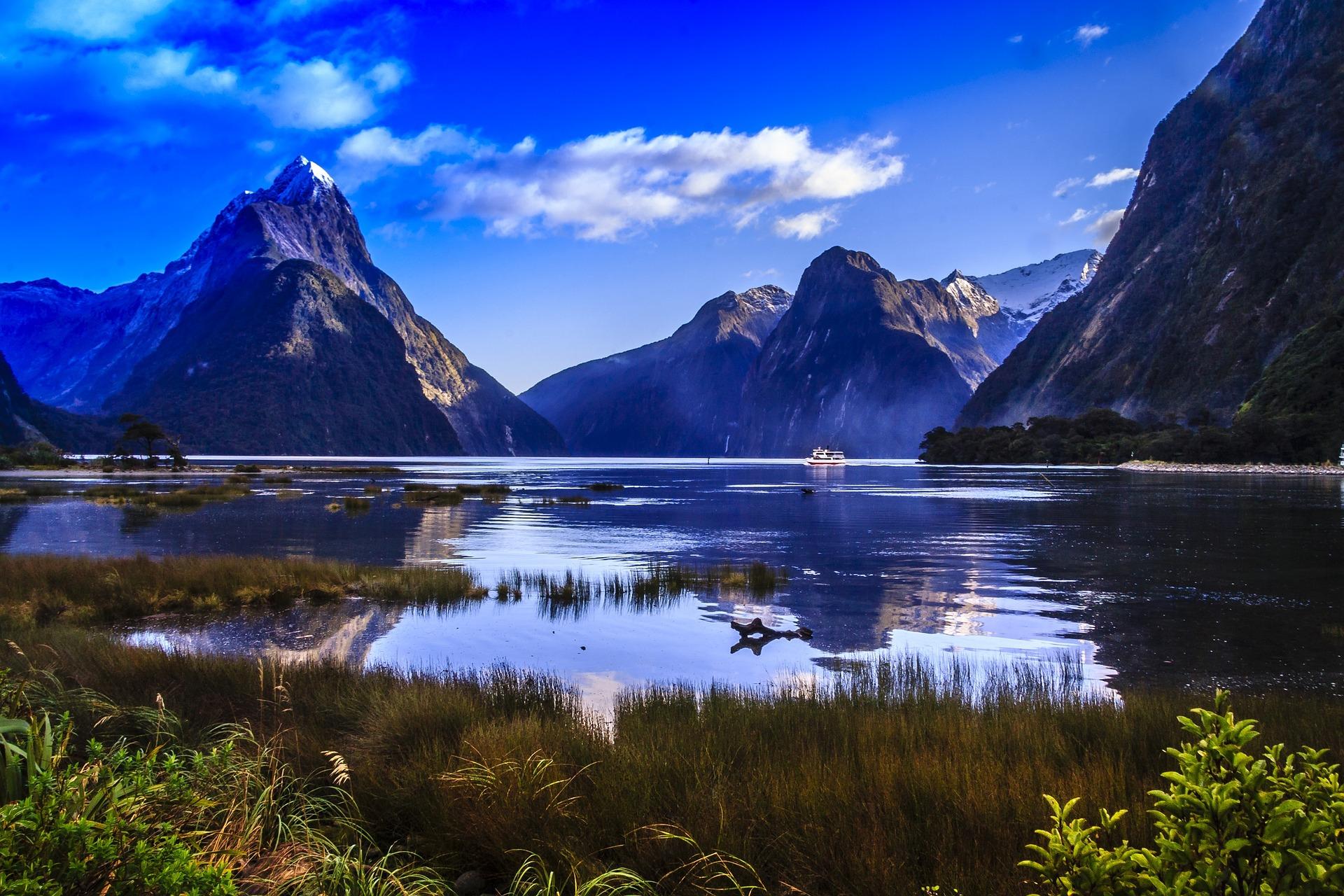 New Zealand dating Vis